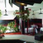 Alexandra caffé - restaurant